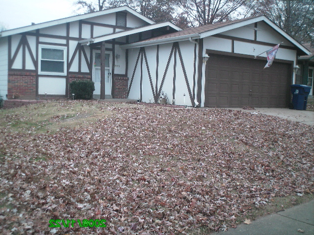 Leaf Clean Ups Florissant Hazelwood Missouri