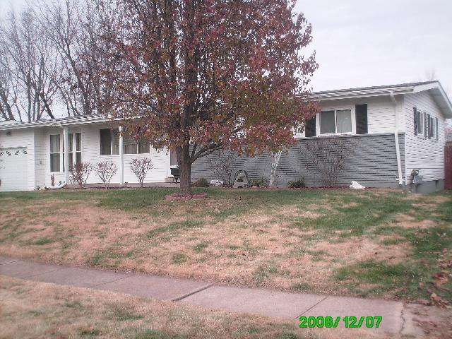Leaf Clean Ups Florissant Hazelwood Missouri